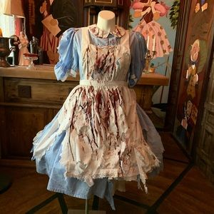 Halloween Costume Alice In Wonderland Scary XL